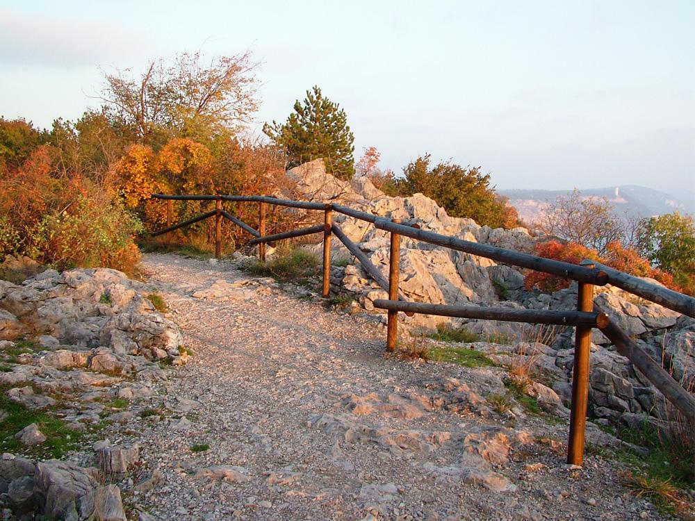 Scorcio del sentiero Rilke