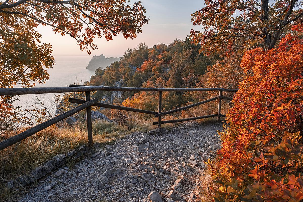 Deželni naravni rezervat Devinske stene
